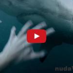 Hororové! Muž bojuje s obrovským žralokom