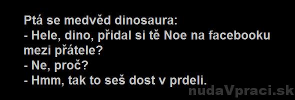 Medveď a dinosaurus na facebooku