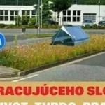 Cieľ pracujúceho Slováka