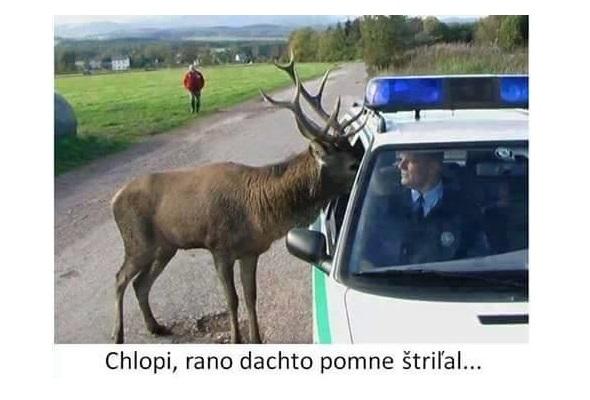Jeleň a polícia