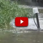 Perfektné! Loch Ness príšera z Ruska